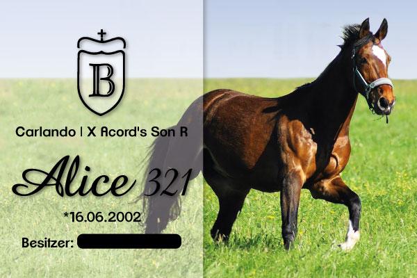 Boxenschild-Plexiglas-15