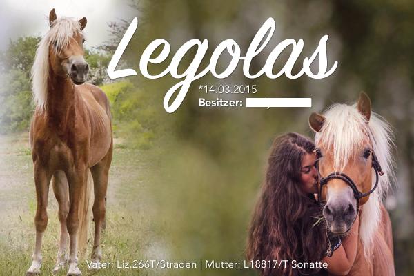 Boxenschild-Plexiglas-53