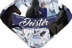 Boxenschild-Diamant-Plexiglas-Sonderform