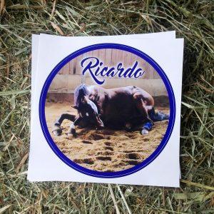 Pferdeaufkleber Boxenschild Design Ricardo