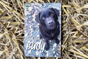 Haustierschild-Budy