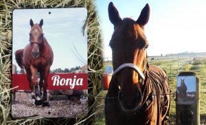 Koppelschild-Ronja